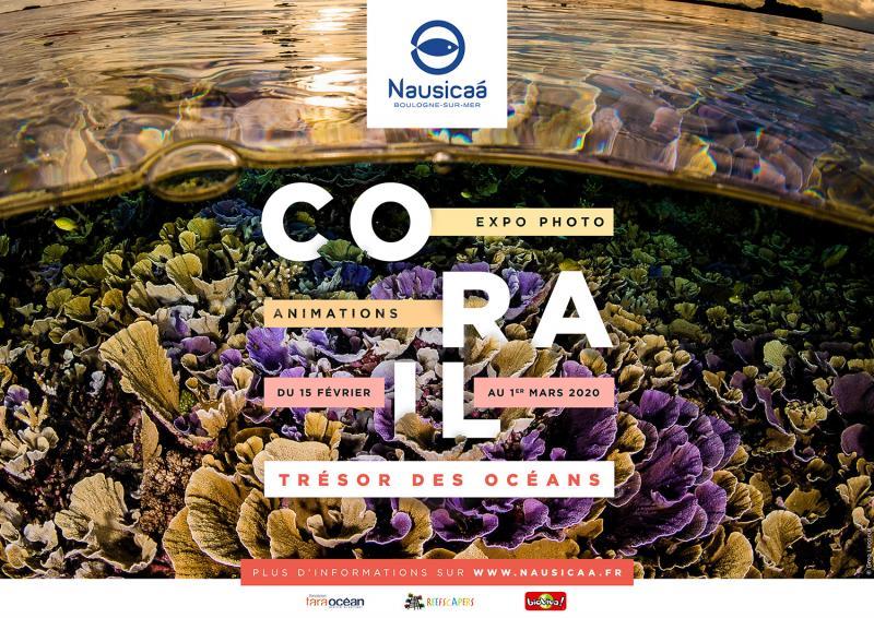"""Affiche de l'expo """"Corail"""", à voir jusqu'au 1er mars à Nausicaá"""