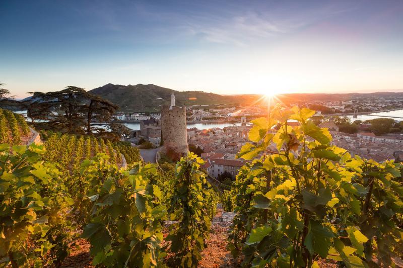 Vignobles Ardèche